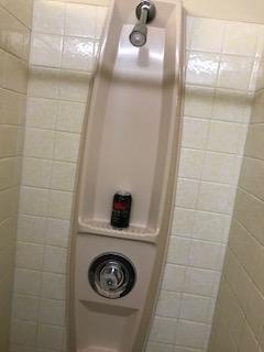 showerbeer